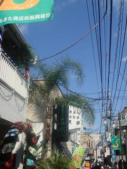 ai_20100516_11.JPG
