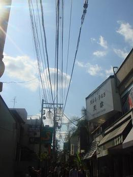 ai_20100516_12.JPG