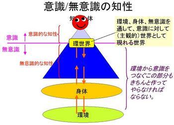 ai_20090831_01.JPG
